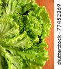 Fresh green lettuce on a table - stock photo
