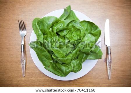 Fresh green lettuce on plate - stock photo