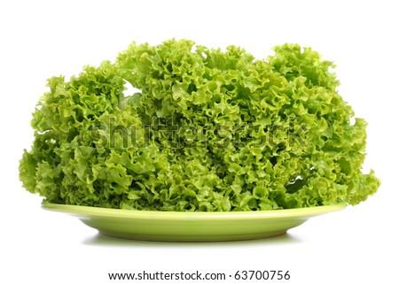 Fresh green lettuce on plate. White background. - stock photo