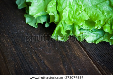 Fresh green lettuce  on the dark wooden table. Selective focus. Macro - stock photo