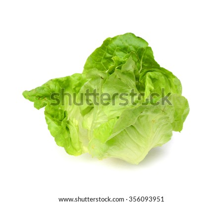 Fresh Green lettuce Salad leaves Isolated on white background close up. Selective focus.