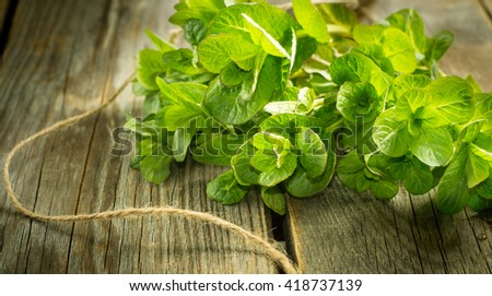 Fresh green mint in a beam on a vintage wooden background, selective focus - stock photo
