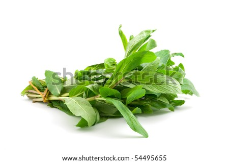 fresh green mint leaves isolated on white - stock photo