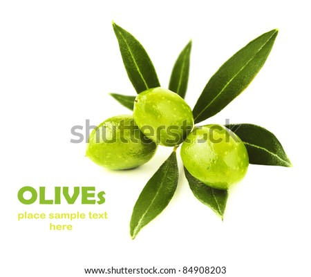 Fresh green olive branch isolated on white background, seasonal healthy fruit, food ingredient, harvest - stock photo