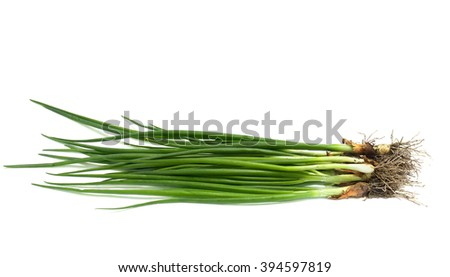Fresh green onions on white background - stock photo