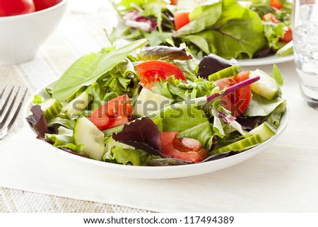 Fresh Green Organic Garden Salad on a background