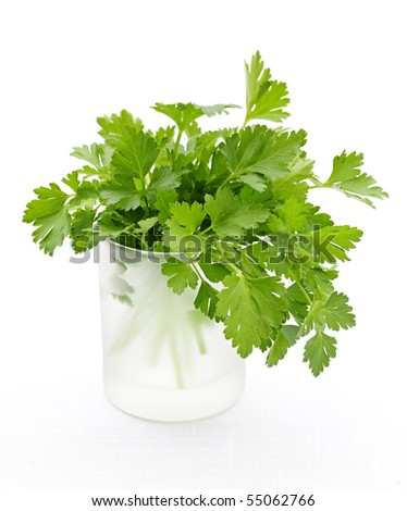 Fresh green parsley in glass isolated on white background - stock photo