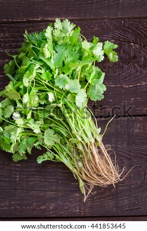 Fresh Green Parsley with Roots on Dark Brown Wooden Background, Close-up, Top View - stock photo