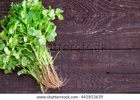 Fresh Green Parsley with Roots on Dark Brown Wooden Background, Close-up, Top View, Free Space for Text - stock photo