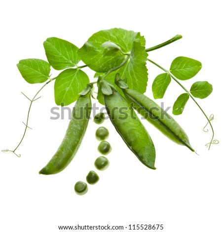 Fresh green pea in the pod close up decor isolated on white background - stock photo