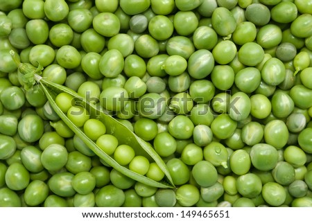 Fresh green pea pod in the corner on the background of green peas - directly above shot  - stock photo