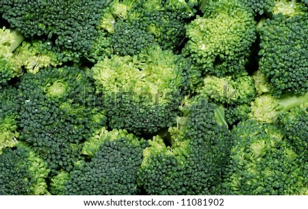 Fresh green raw broccoli piled up and washed - stock photo