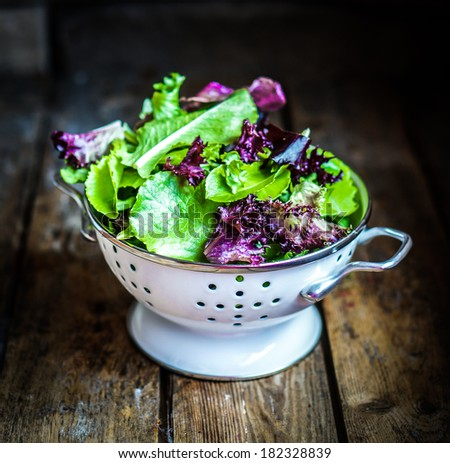 Fresh green salad with spinach,arugula,romane and lettuce - stock photo
