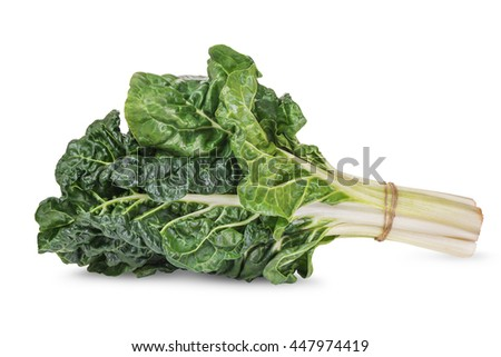 fresh green silverbeet leaves vegetable isolated on  white  background - stock photo