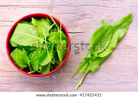 fresh green sorrel leaves in a red bowl and on the old grey background in the cracks closeup, top view - stock photo