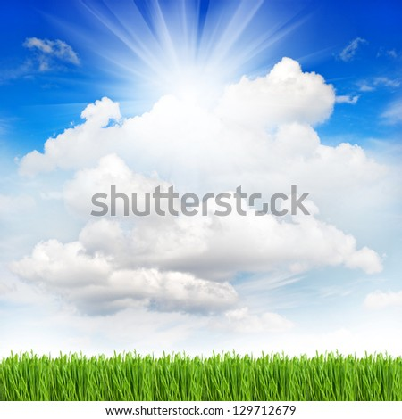 fresh green spring grass with water drops over perfect cloudy blue sky background. environment concept - stock photo