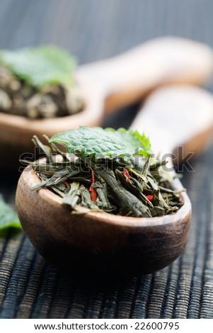 Fresh green tea leaves on wooden spoon - stock photo