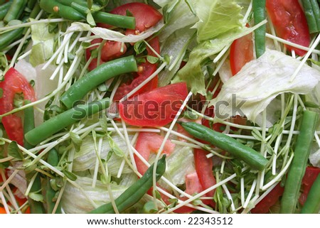 Fresh green vegetable salad with sliced tomatoes.