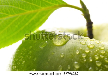 fresh green wet apple with leaf, granny smith  macro shot - stock photo