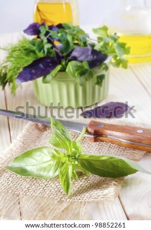 fresh greens - stock photo