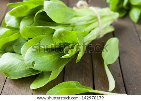 fresh greens for salad, food - stock photo