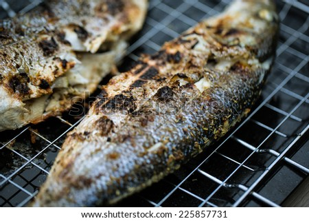 Fresh Grilled Sea Bass at the Barbecue - stock photo