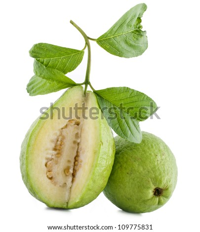 fresh guava fruit isolated on white background - stock photo