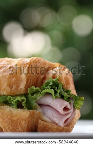 fresh Ham sandwich - stock photo