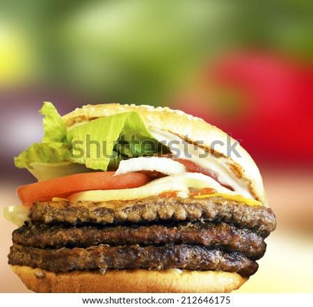 Fresh Hamburger against colorful vegetable background - stock photo