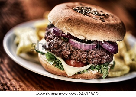Fresh hamburger with fried potatoes - stock photo