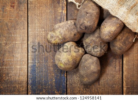 Fresh harvested potatoes with soil still on skin, spilling out of a burlap bag, on a rough wooden palette. - stock photo