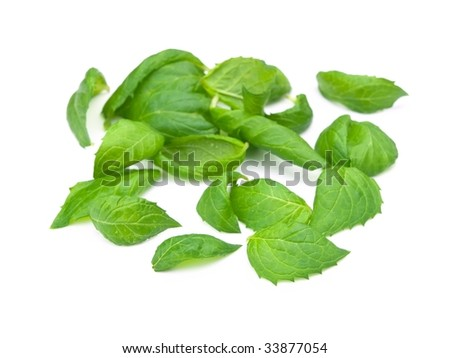 Fresh harvested spearmint leaves (Mentha spicata) isolated on white with natural shadows
