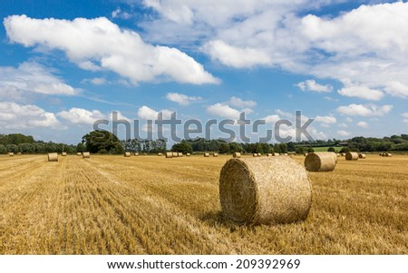 Fresh hay bales on an English field during summertime - stock photo