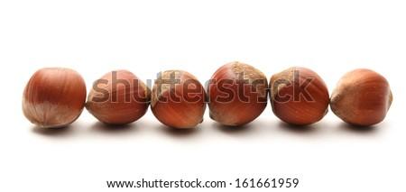 Fresh hazelnuts on white background - stock photo