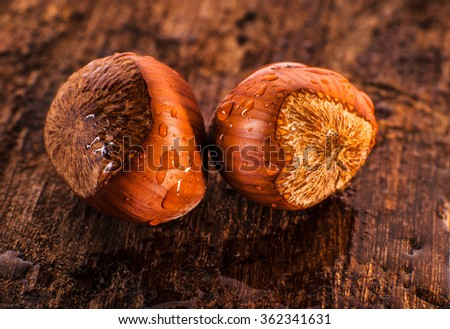 Fresh hazelnuts with drops of water