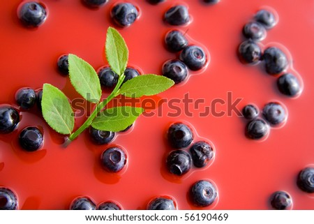 Fresh healthy blueberries representing blueberry juice concept.