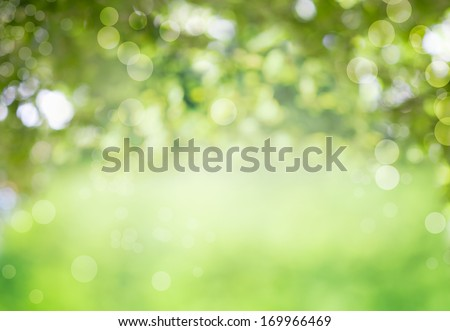 Fresh healthy green bio background with abstract blurred foliage and bright summer sunlight and a central copyspace for your text or advertisment - stock photo