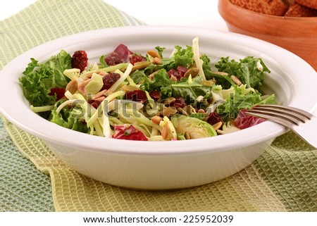 Fresh healthy kale and cabbage salad with dried cranberries and pumpkin seeds - stock photo