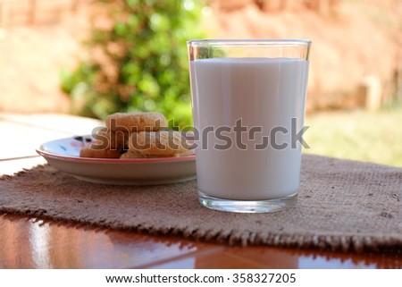 fresh healthy milk and cookies - stock photo