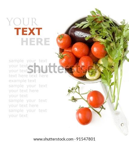 Fresh healthy vegetables (tomato branch, parsley, pepper and aubergine)  isolated on white with sample text