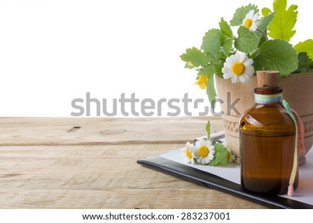 Fresh herb, medical clipboard on wooden table. Alternative medicine concept. Isolated on white background - stock photo