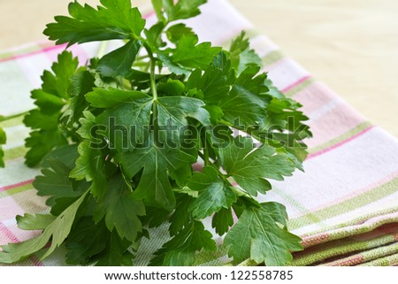 Fresh herb parsley on napkin on table. Selective focus