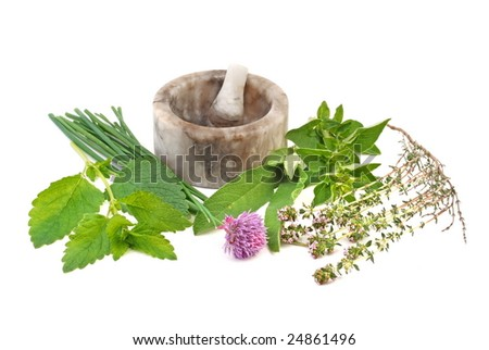 Fresh herb selection of  thyme, sage, oregano, chive and lemon balm with mortar to the rear, on white background. - stock photo