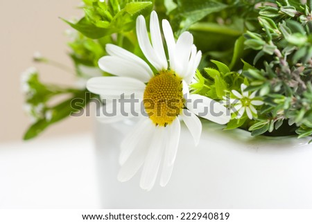 fresh herbal flowers in mortar on white table - stock photo