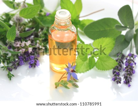 Fresh herbs and oil in bottle - spa aromatherapy - stock photo