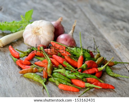 Fresh herbs and spices - stock photo