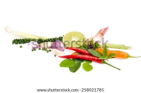 Fresh herbs and spices isolated on white background - stock photo