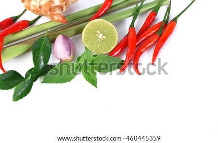 Fresh herbs and spices isolated on white background