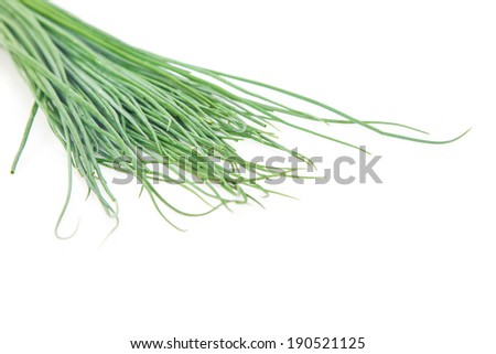 Fresh Herbs, Bunch of chives On White Background - stock photo