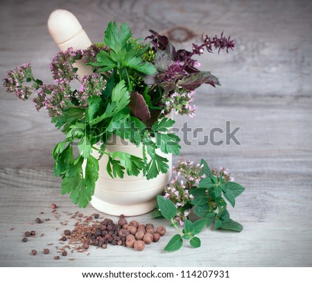 Fresh herbs collection in mortar on wooden surface - stock photo